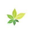 fresh bio green leaves organic herb symbol vector image vector image