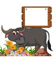 cute buffalo cartoon posing with blank board for y vector image