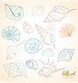 seashell paradise holiday marine set vector image