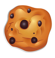 A crunchy biscuit with choco balls vector image vector image