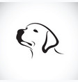 a dog headlabrador retriever on white vector image vector image