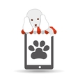 digital pet shop with poodle and paw vector image vector image