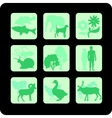 life on Earth - set vector image vector image