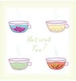 natural tea vector image vector image