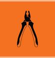 pliers tool icon vector image vector image