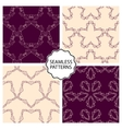 A set seamless patterns vector image