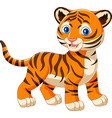 cartoon baby tiger isolated on white background vector image vector image