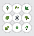 flat icon nature set of jungle oaken garden and vector image vector image