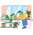 grandmother a pensioner watering indoor flowers vector image vector image