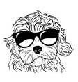 portrait a dog in glasses heads dog vector image vector image