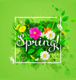 spring composition with flowering chamomiles vector image