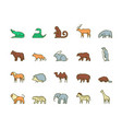 wild animals symbols color linear icon set vector image vector image