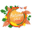 autumn sale promotion banner poster paper vector image