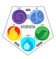 ayurveda elements and doshas icons vector image vector image