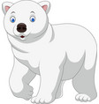 cartoon polar bear isolated on white background vector image vector image