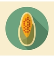 Corncob retro flat icon with long shadow vector image vector image