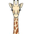 giraffe head in color icon vector image vector image