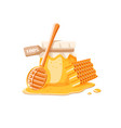 glass pot with honey spoon with drips honey and vector image vector image