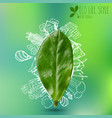 green leaf with circle ecology doodles sketched vector image vector image