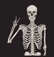 human skeleton posing over black background vector image vector image