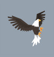 north american bald eagle character with vector image