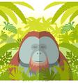 orangutan on jungle background vector image