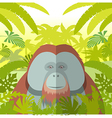 Orangutan on the Jungle Background vector image vector image