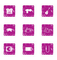 philharmonic icons set grunge style vector image vector image