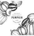 pumpkin color design template hand drawn vector image vector image