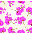 seamless texture branches orchid phalaenopsis vector image vector image