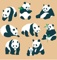Set Of Cute Panda Bears With Different Actions Vec vector image vector image