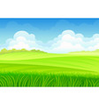 tall grass on background meadows vector image vector image