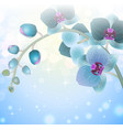 Blue Orchid Flower on a Blurred Background vector image vector image