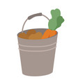 carrot and potato in bucket vegetables vector image vector image