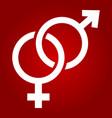 heterosexual glyph icon valentines day vector image vector image