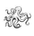 octopus icon marine seafood and ocean fishing vector image
