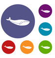 whale icons set vector image vector image