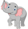 cartoon elephant isolated on white background vector image vector image