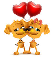 dog couple love and red balloons of heart shape vector image vector image