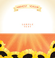 Harvest season with sunflowers vector image