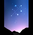 sagittarius zodiac constellations sign with forest vector image vector image
