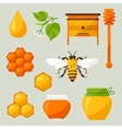 Set of honey and bee objects vector image