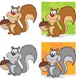 Squirell cartoon vector image vector image