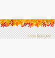 abstract autumn panorama with colorful leaves vector image vector image