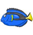 blue tang fish character vector image vector image