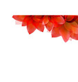 Border Of Red Tulips vector image vector image