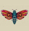 colorful beautiful butterfly concept vector image vector image