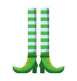 leprechaun legs with shoes and striped socks vector image
