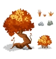 Orange plants Trees bushes grass and stone vector image vector image