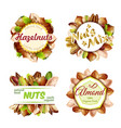 premium colorful natural nuts labels set vector image vector image